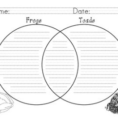 Frog And Toad Venn Diagram 2016 Dodge Ram 2500 Trailer Wiring Frogs Toads Compare Contrast By Leticia Gallegos