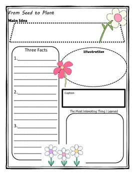 From Seed to Plant Story Map Graphic Organizer by Ussery3