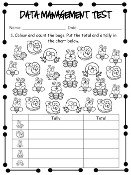 Grade 2 Data Management Unit Test by Miss Page's Classroom