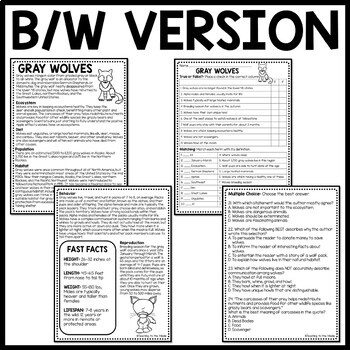 Gray Wolves Informational Text Reading Comprehension