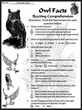 Halloween Reading Activities: Owl Facts Activity Packet
