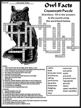 Halloween Reading Activities: Owl Facts Science Activity