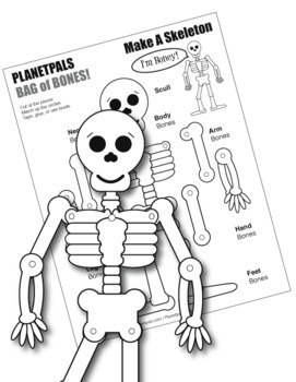 Bone HEALTH Science Skeleton Toy Lesson Cut Assemble Learn
