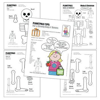 Bone HEALTH Science Skeleton Toy Lesson Cut Assemble Learn
