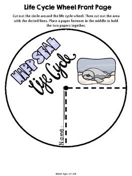 harp seal life cycle diagram 2006 ford e250 radio wiring wheel and poster set by sarah tighe tpt