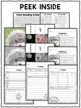 Hedgehog Close Reading Passage Activities by Nicole and