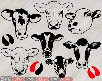 heifer cows head silhouette
