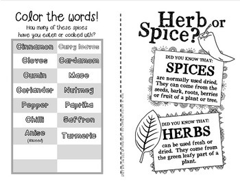 Herbs and Spices {Spice it up! Fun and facts booklet} by