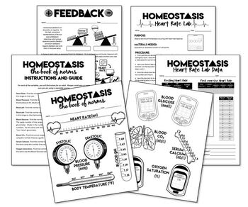 Homeostasis Activities- Great for Health Science! by The