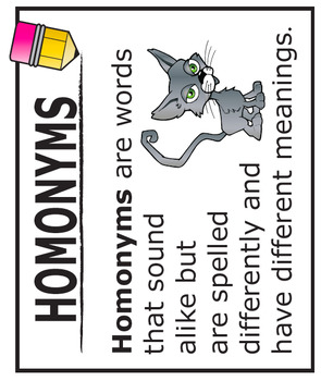 Homonyms Activities + Lesson, FULL COLOR Poster, and