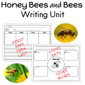 Honey Bees and Bees Writing Unit for Prek to 2nd Grade by