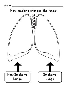 How Smoking Changes the Lungs by LIVIN' IN A VAN DOWN BY