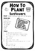 How to Plant Sunflowers: Procedural Text Model by Mrs Mac