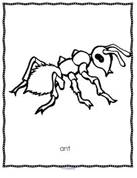 INSECTS Activities and Printables with Photos and