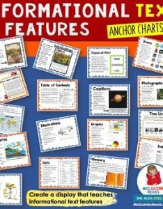 also informational text features anchor charts non fiction rh teacherspayteachers