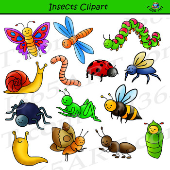 insects clipart - bug graphics