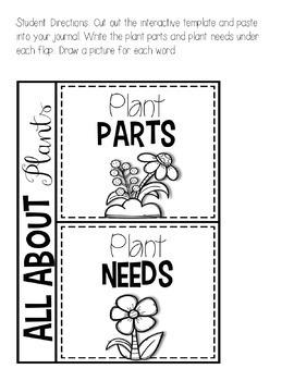 Interactive Science Notebook Plants by TeachingInHighHeels