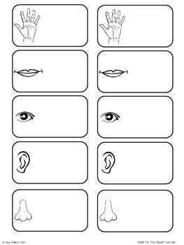 Interactive Vocabulary Notebook FREEBIE! by Babbling Abby
