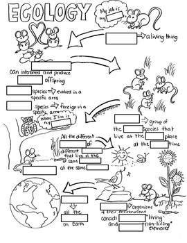 Intro to Ecology Sketch Notes W/Teacher Guide, Notes