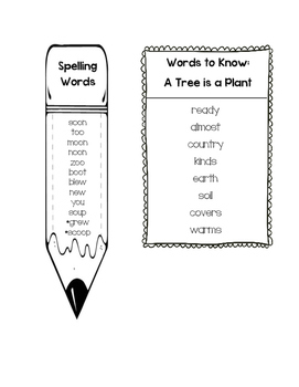 Journeys Unit 5 First Grade Spelling and Words to Know