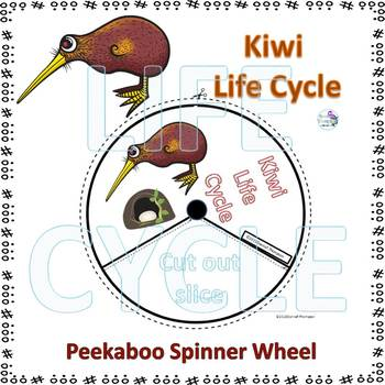 bird life cycle diagram honeywell round thermostat wiring kiwi spinner by donna thompson tpt