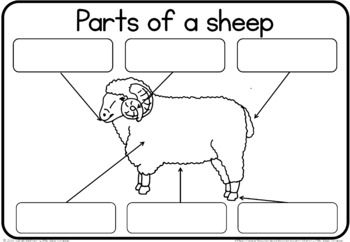 Label the farm animal/ parts of a farm animal worksheet by