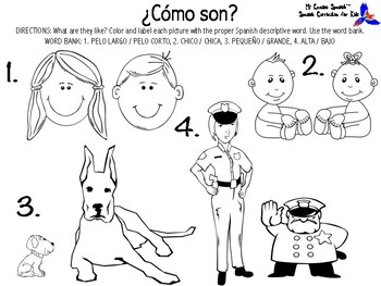 Learn Descriptive Words in Spanish! (Physical Appearance