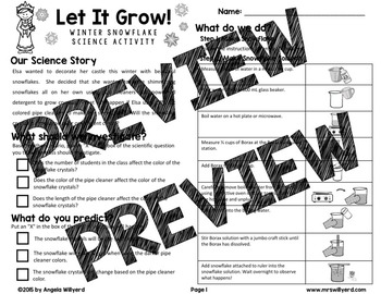 Winter Science Lab: Let It Grow! Snowflake Science