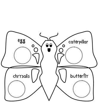Life Cycle of A Butterfly Worksheet by The Art Of Teaching