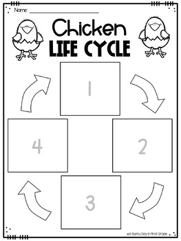 Life Cycle of a Chicken {posters, printables, craft