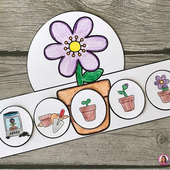 Life Cycle of a Plant Hat (Flower Sequencing Activity) by