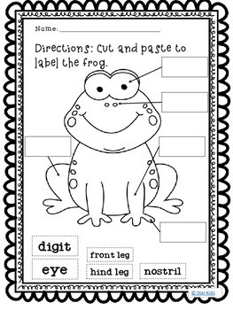 Life Cycle of a Frog ELA and Science Printables for
