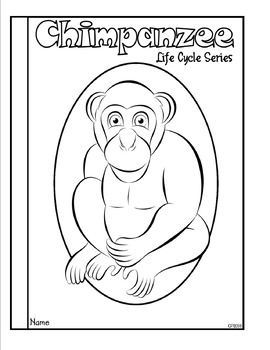 Life Cycle of a Mammal (Chimpanzee) Tab Booklet by