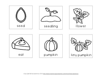 Life Cycle of an Pumpkin Sequencing Freebie by Sara