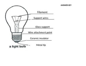 Lightbulb Diagram by Kasia Stover | Teachers Pay Teachers