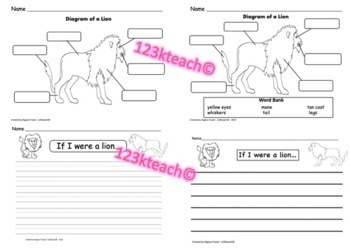 All About Lions, Writing Prompts, Graphic Organizers