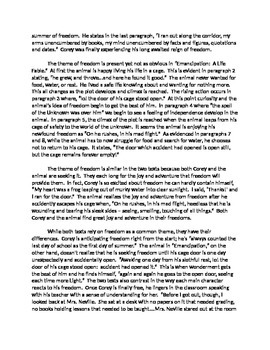 What Is A Literary Essay