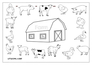 Little Owl: Farm Animals Colouring Book by Little Owl