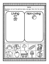 Living vs. Non-Living {{Sort & 2 Worksheets}} by Cupcakes ...