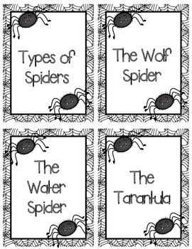 Main Idea and Detail Spiders by Thrills and Frills In
