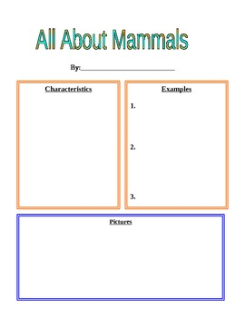 Mammal Worksheet For Animal Book By Jennifer Hurley