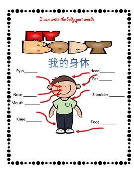 Mandarin Chinese body parts unit I work sheet 中文身體部位練習I by Fun fun teaching