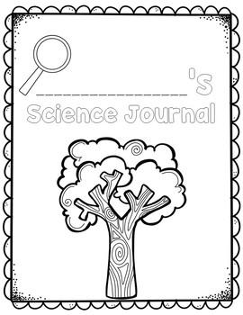Materials In Our World: Kindergarten Foss Science