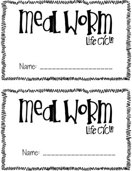 Once Upon A Mealworm {FOSS Mealworm Life Cycle Book} by
