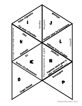 Mendelian Genetics Triangle Puzzle by Brighteyed for