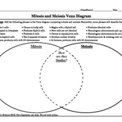 Mitosis And Meiosis Venn Diagram Answers E36 Wiring Radio By A Thom Ic Science Tpt