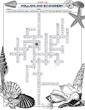 Mollusks and Echinoderms Crossword Puzzle by Science