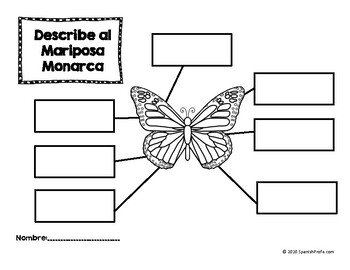 Monarch Butterflies in Spanish (Mariposa monarcas centros
