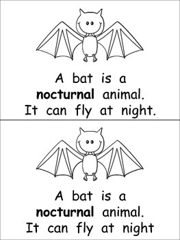 Nocturnal Animals- Nonfiction Leveled Reader- Level C