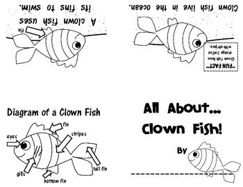 Non-Fiction Emergent Reader: Clown Fish ~FREEBIE~ by